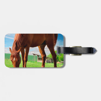 horse eating grass luggage tag