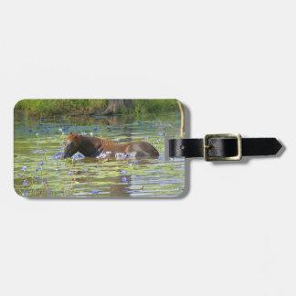 Horse eating in the lake, Australia, Photo Luggage Tag