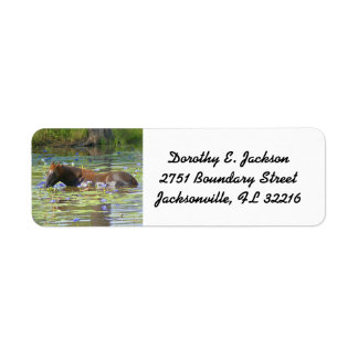 Horse eating in the lake Australia, Return Address Label