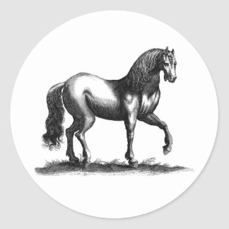 Horse Engraving Classic Round Sticker