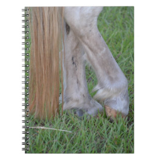 horse equine hind hooves one resting tail notebook