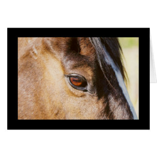Horse Eye Card