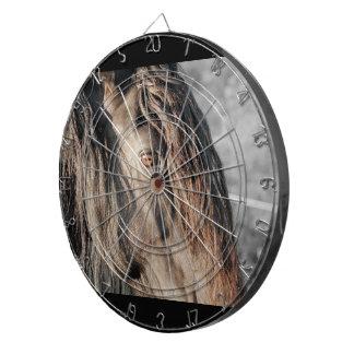 Horse Eye Dartboards