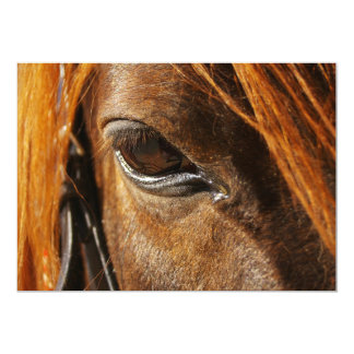 "Horse eye 5"" x 7"" invitation card"