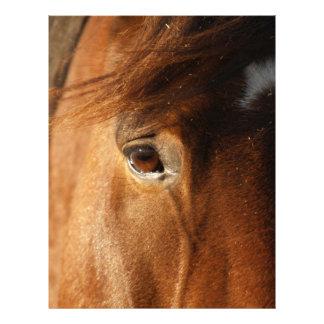 Horse Eye Customized Letterhead