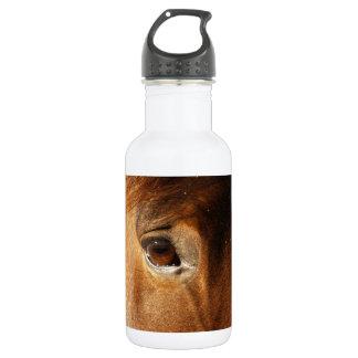 Horse Eye 18oz Water Bottle