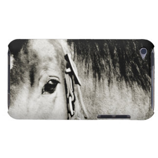 Horse Eye Photograph Barely There iPod Case