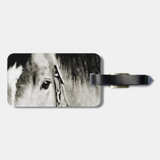 Horse Eye Photograph Tag For Luggage