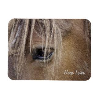 Horse eye Premium Magnet