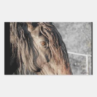 Horse Eye Rectangular Sticker