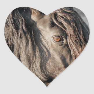 Horse Eye Heart Sticker