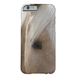 Horse Face Barely There iPhone 6 Case