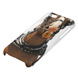 Horse Face Case Case For iPhone 5C