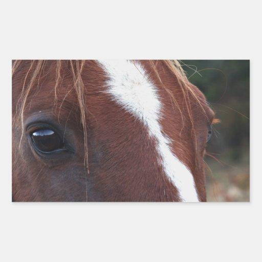 Horse Face Closeup Rectangular Sticker