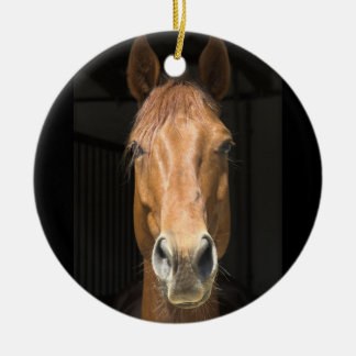 Horse Face Photograph Ceramic Ornament