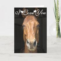 Horse Face Photograph I Love You Card
