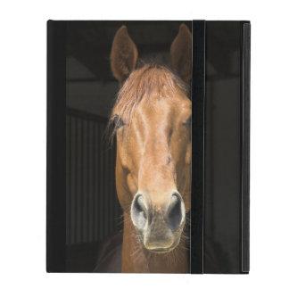 Horse Face Photograph iPad Folio Cases
