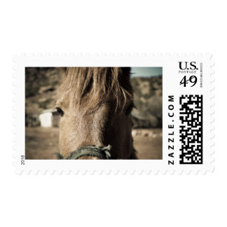 Horse Face Postage