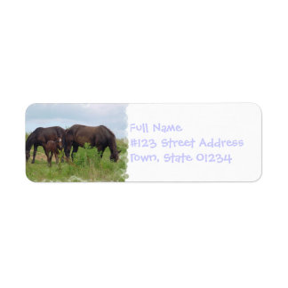 Horse Family Grazing Mailing Label