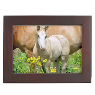 Horse Family Memory Boxes