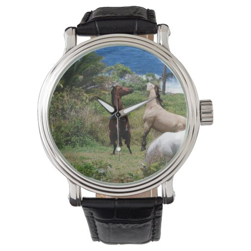 Horse Family Wrist Watches
