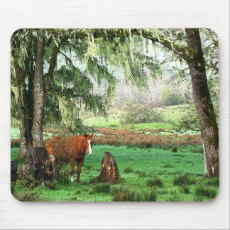 Horse Farm Animals Ranch Mouse Pad