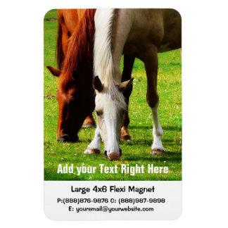 Horse Farm or Ranch Business Rectangular Photo Magnet