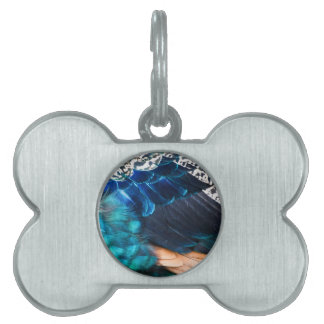 Horse Feathers! Pet Tag