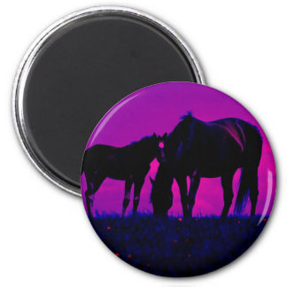Horse & Filly 2 Inch Round Magnet