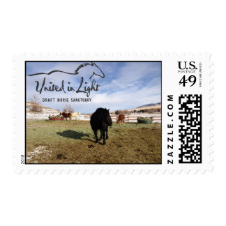 Horse First Class Stamp