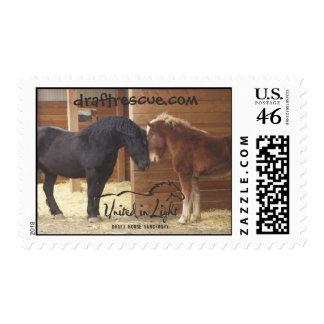 Horse First Class Stamp
