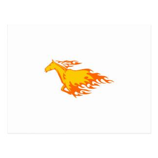 Horse Flames Postcard