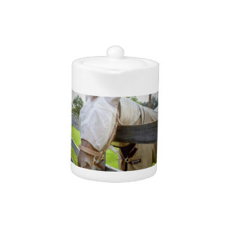 horse fly mask over fence pasture image