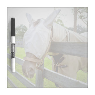 horse fly mask over fence pasture image Dry-Erase board