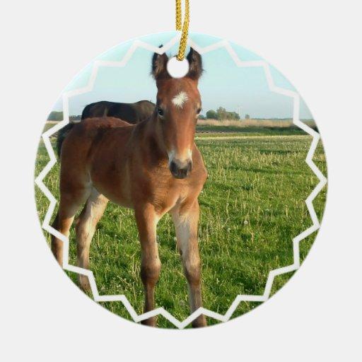 Horse Foal Ornament