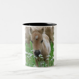 Horse Foal Smelling Flowers on a Mug
