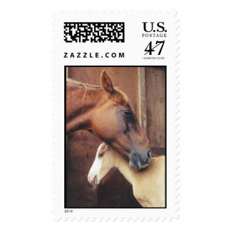 Horse & Foal Stamp