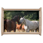 Horse friends animal lovers serving tray