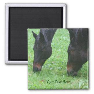 Horse Friends Grazing Animal Magnet