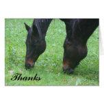 Horse Friends Grazing Thank You Card