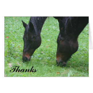 Horse Friends Grazing Thank You Card