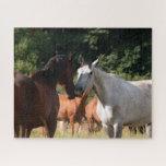 Horse friends jigsaw puzzle