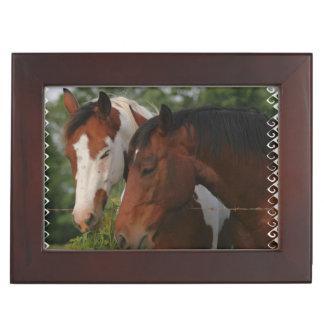horse-friends memory box