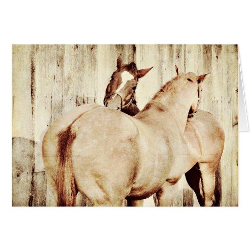 Horse Friendship Birthday Card