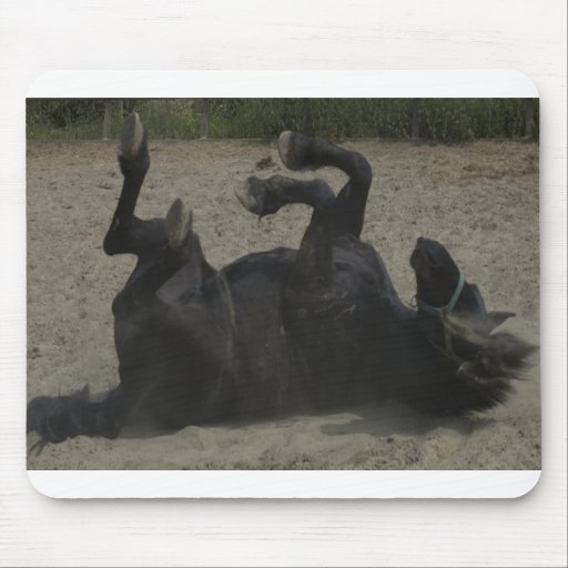 HORSE FROLICKING MOUSE PAD