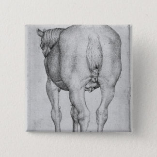 Horse, from the The Vallardi Album Pinback Button