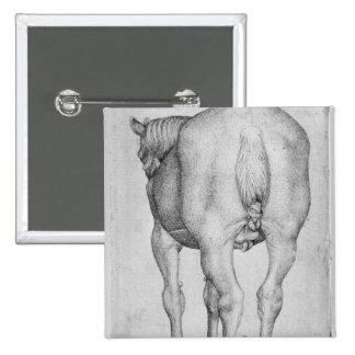 Horse, from the The Vallardi Album Pinback Button
