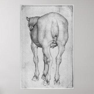 Horse, from the The Vallardi Album Poster