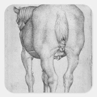 Horse, from the The Vallardi Album Square Sticker