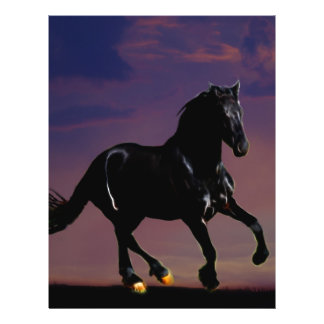 Horse galloping free flyer